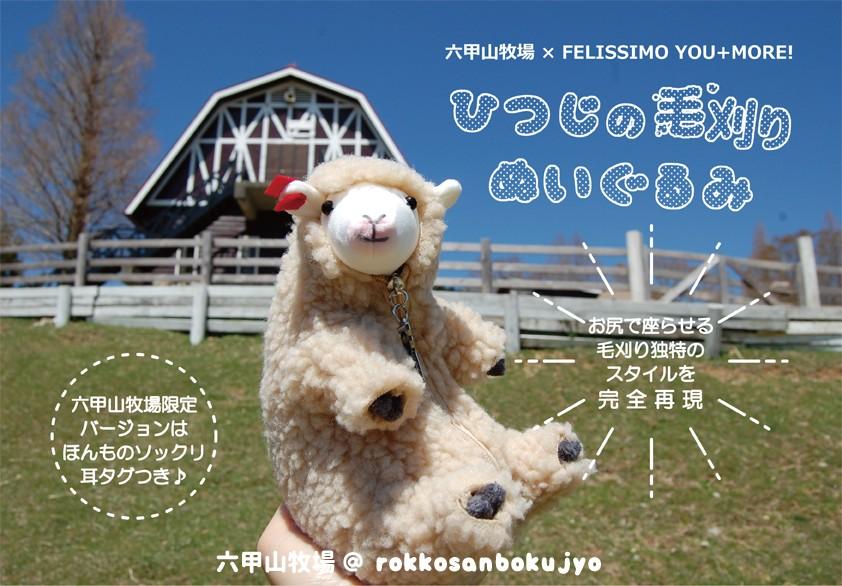 210419-sheep- (1)