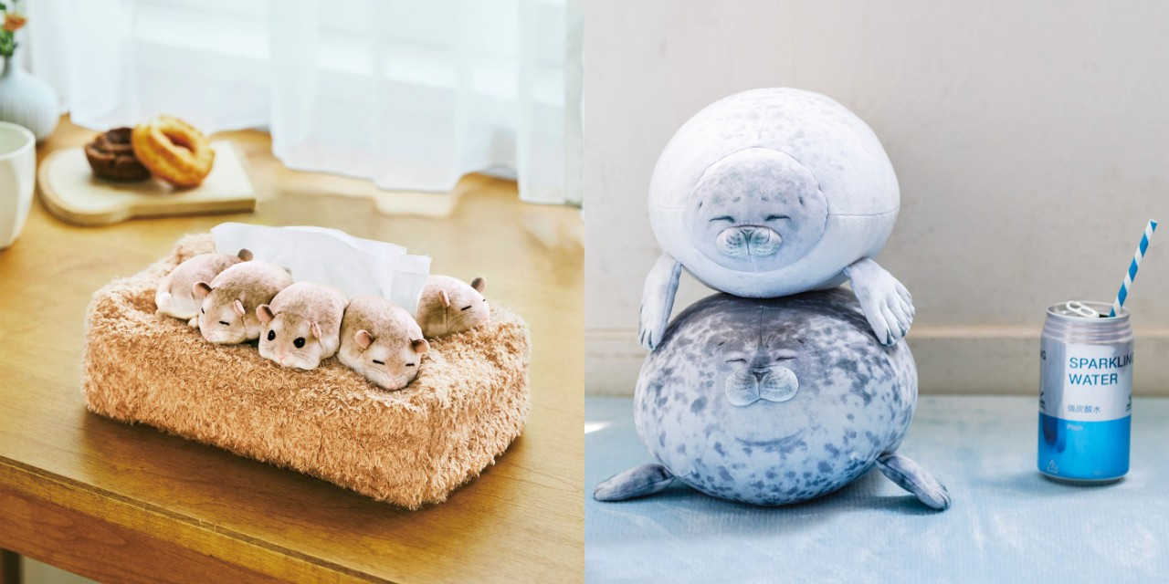 210419-sheep- (4)