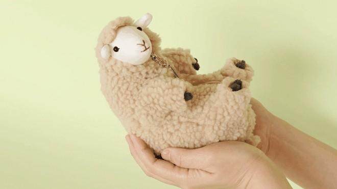 210419-sheep- (7)